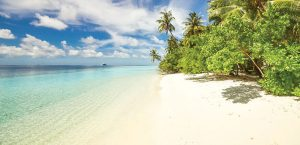 PageImage Matabungkay Tours Beach 300x145 - PageImage-Matabungkay-Tours-Beach