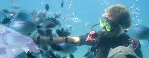 snorkelling 300x117 - snorkelling